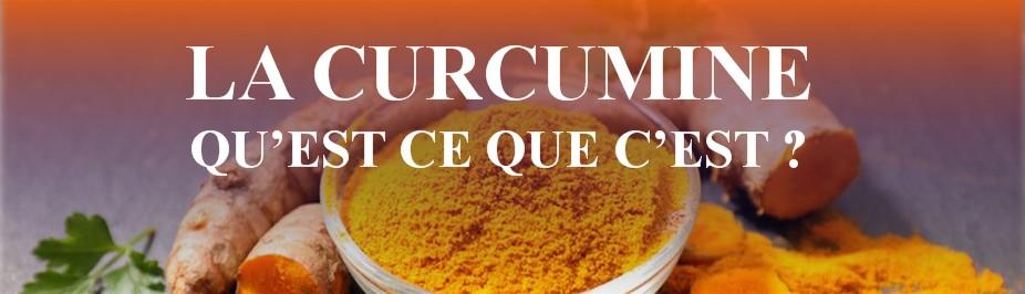 curcuma-longa
