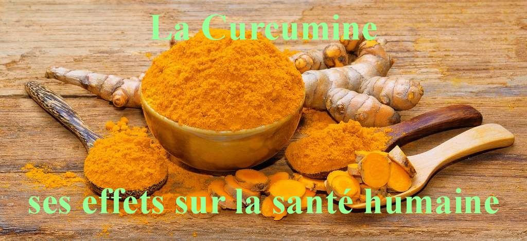 curcuma-longa-curcuminoides_sante